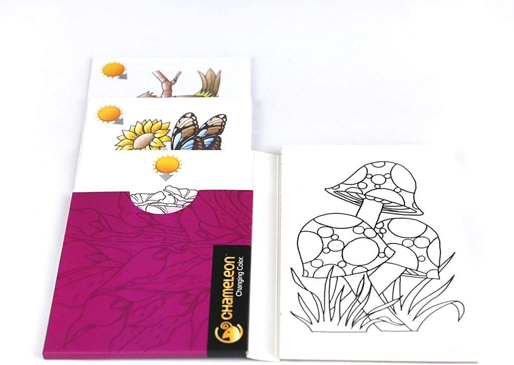 Chameleon Motivkarten Natur